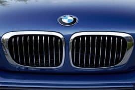 BMW hood emblem roundel removal