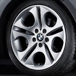 BMW Wheel Style Number 107